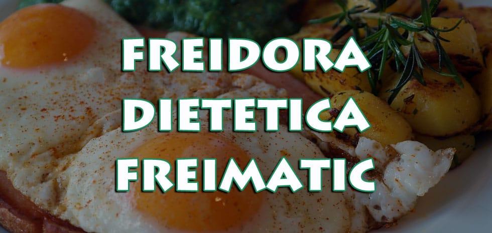 freimatic dieet friteuse